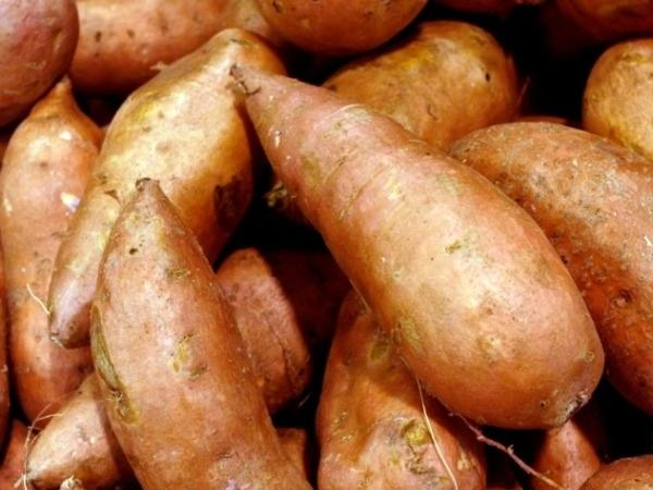 Sweet Potatoes: A Good Carb!
