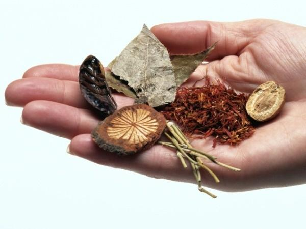 Indian Blood Cleansing Herbs | Healthy Living