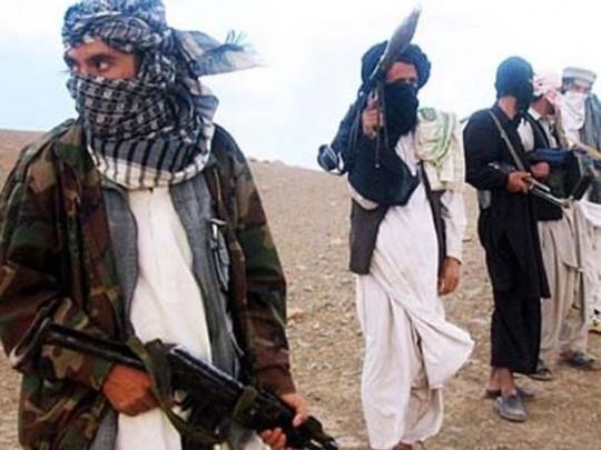Pakistan to Release 12 Taliban Militants