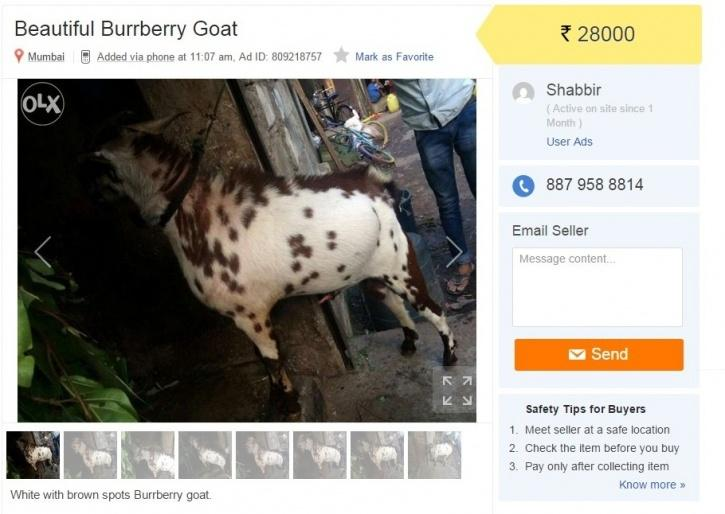 15 Hilarious Online Classifieds That Are Selling Crazy Things