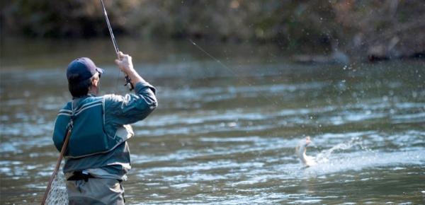 fishing himachal pradesh