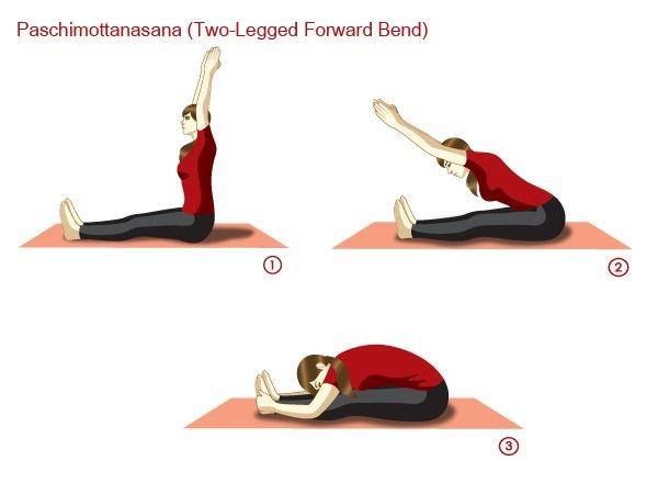 Paschimottanasana (Two-legged forward bend)