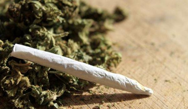 Marijuana Health Benefits And Health Risks