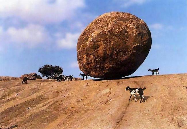 krishna butterball