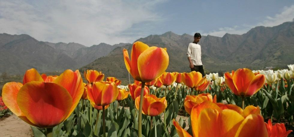 11 beautiful places to visit around india this spring indiatimes 11 beautiful places to visit around india this spring mightylinksfo