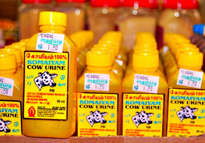 India's Biggest Retailers Are Lining Up To Sell Cow Urine, You Can Even Buy  It Online