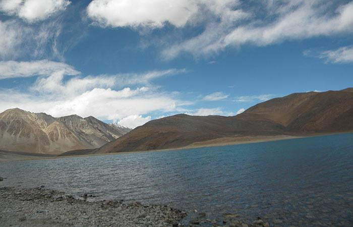 Tourism At Pangong Tso Is Killing The Himalayan Mormot, Here's What