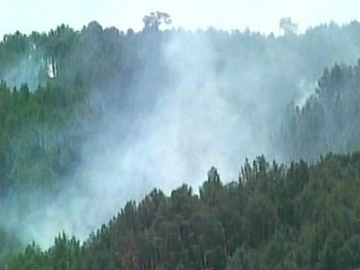 Forest fire Lolab