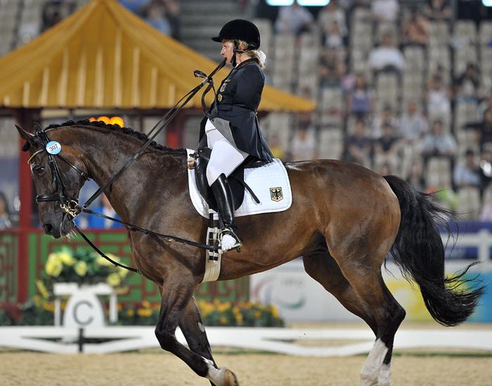 paralympic equestrian