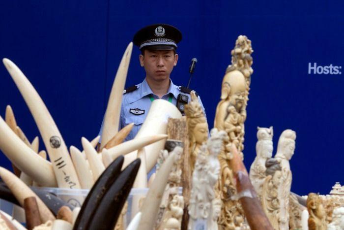 Ivory trade, China