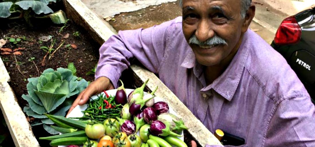 garden city farmers