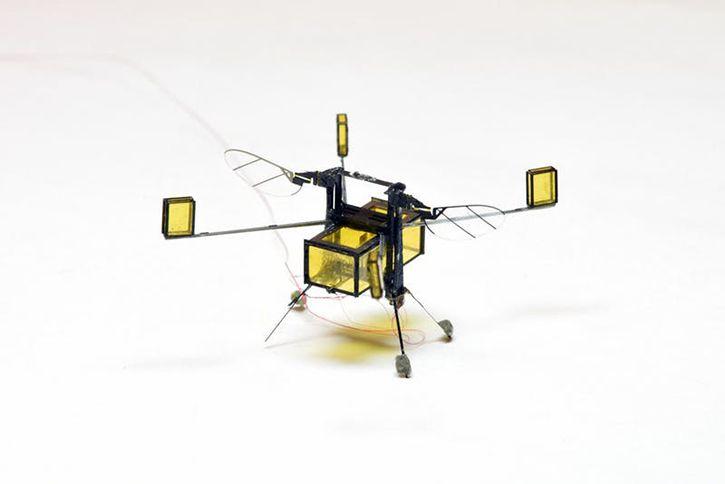 Robobee micro drone