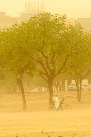Dust storm Delhi air quality particulate matter Oman Central Pollution Control Board