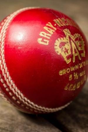 Rex Rajkumar Singh took 10 wickets