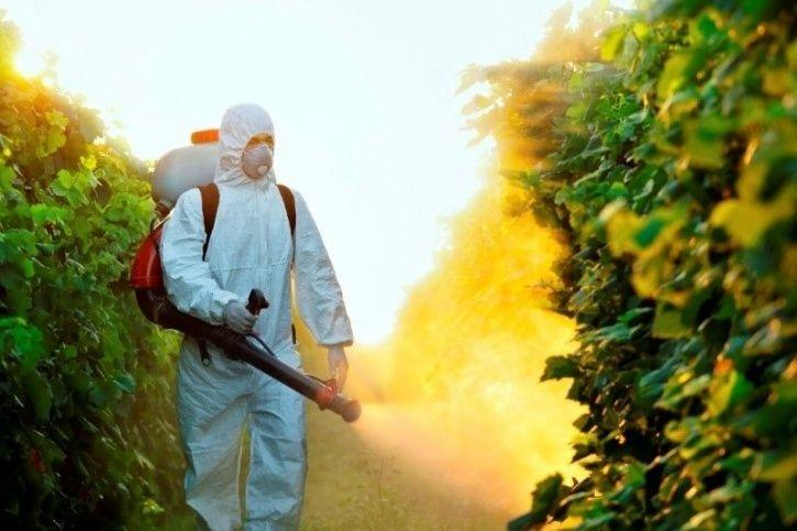 Baking Soda Can Wash Off 96 Percent Of Toxic Pesticides From Your Fruits And Vegetables
