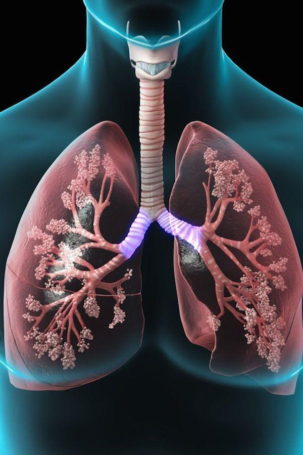 13 Ways You Can Purify Your Lungs Naturally Indiatimes