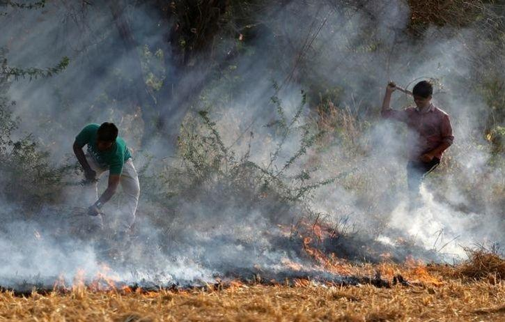 Rs 1,000 Crore Plan To Curb Stubble Burning Air Pollution In NCR