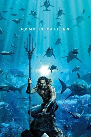 1st Poster Of Aquaman Starring Jason Momoa Is Out People Are Comparing It With Finding Nemo
