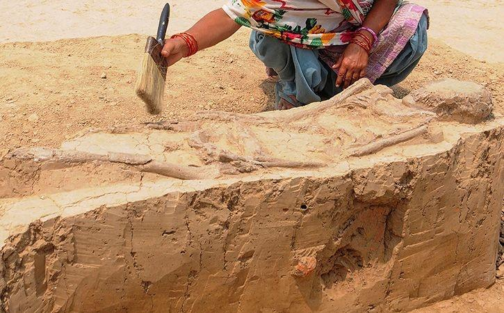 Physical Evidence Of Chariots In Copper Bronze Age