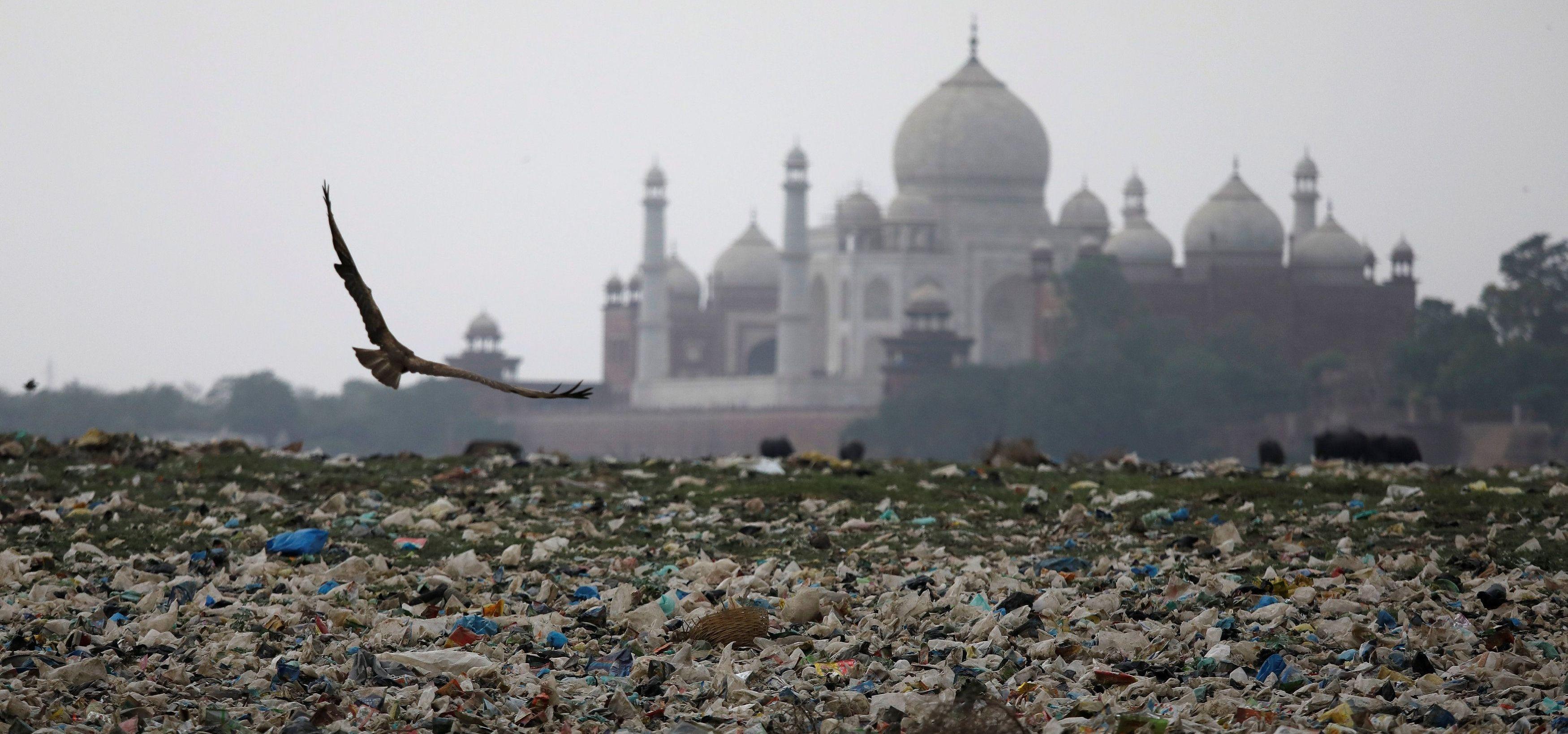 taj plastic pollution