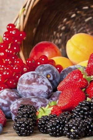 7 Foods High In Disease Fighting Antioxidants You Can Include Into Your Diet Right Away