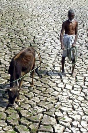 card big india climate change