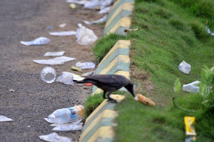 Maharashtra To Ban Plastic