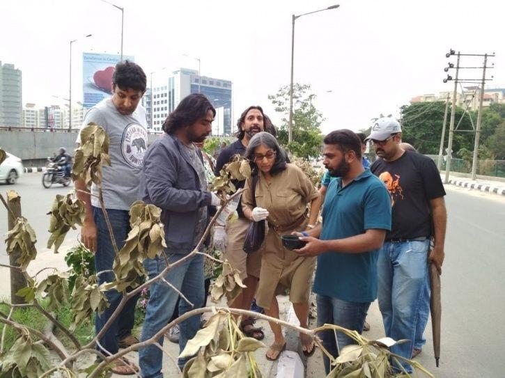 24 Trees Cut To Increase The Visibility Of Just One Hoarding