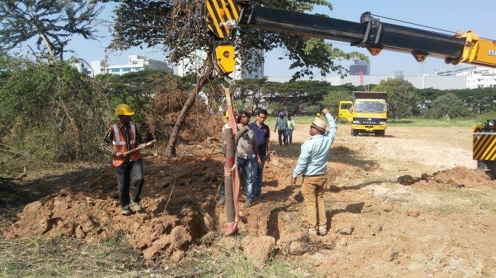 Green Century, Vijay Nishanth, Tree Transplant