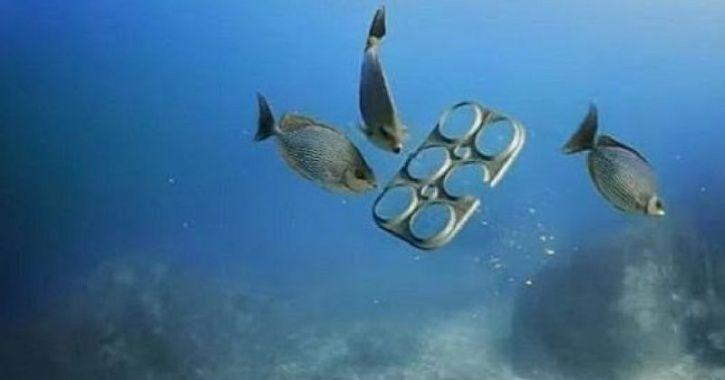 P plastic, menace, pollution