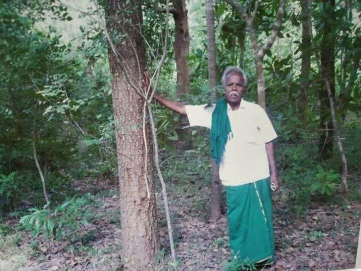 3000 Trees Planted By Late Environmentalist 'Maram