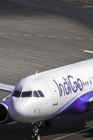 IndiGo airline CAT Chairman L Narasimha Reddy take off civil aviation miffed