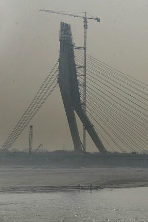 New Delhi Signature bridge punjab school stripped tigress avni top news