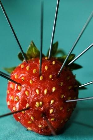 strawberry fruit scare culprit Australia 50 year old woman police reward arrest