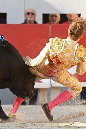 Bullfighting is dangerous