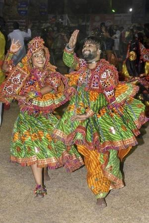 Gujarat crocodile garba pipariya vadodara forest department officials