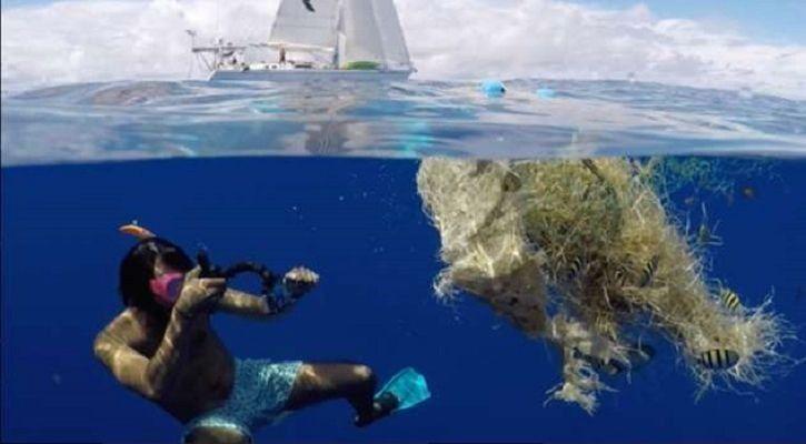 Lecomte Pacific swimmer