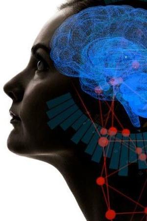 Map Of Brains Memory Bank
