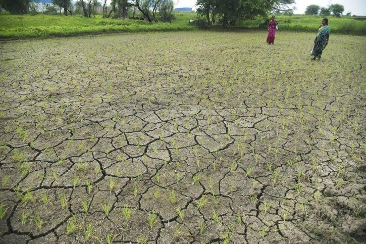 rought, artificial rainfall, Uttar pradesh, irrigation, IIT Kanpur, Bundelkhand region, ken river, V