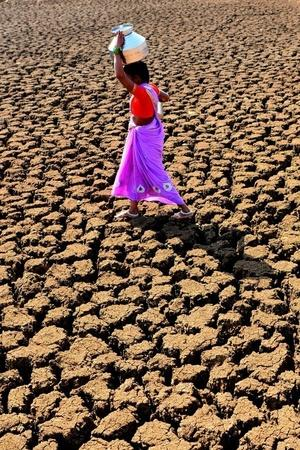 BJP Congress Address Climate Change In Manifestos Now Is The Time To Walk The Talk