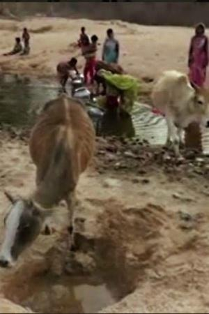 Chhattisgarh Charchari village pond water villagers Balrampur elections