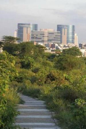 Aravali Biodiversity
