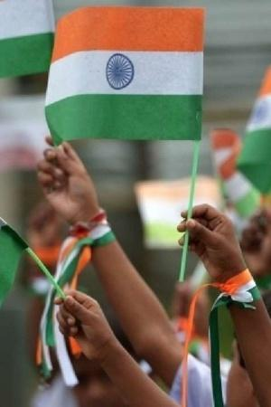 Flags That Grow Into Trees SRKs Ted Talk India To Distribute 2000 EcoFriendly Flags Today