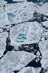 Researchers Are Flustered After Finding Loads Of Microplastics In Arctic Ice Its A Worrying Sign