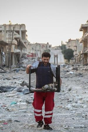 syria cat man