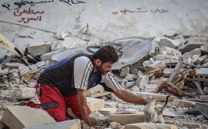 syria cat man