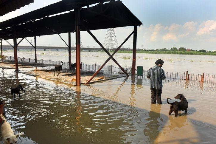Yamuna Flooding, Delhi Floods, Yamuna Water Level, North India Floods
