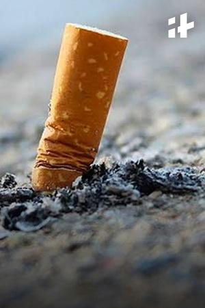 Cigarette Filters Are Polluting Our Oceans!