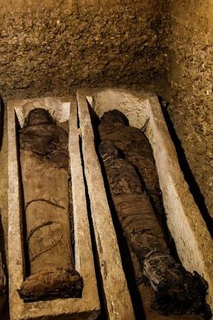 Egypt Minya south of Cairo animals human beings Mummy preservation discovery