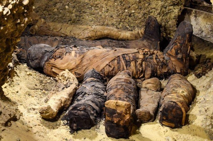 Egypt, Minya, south of Cairo, animals, human beings, Mummy, preservation, discovery